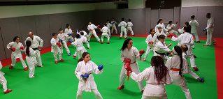 Karaté : un sport de combat pour la citoyenneté